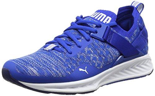 Puma Herren Ignite Evoknit Lo Outdoor Fitnessschuhe, Blau (Lapis Blue-Blue Depths-White), 45 EU