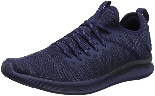 Puma Herren Ignite Flash Evoknit Cross-Trainer, Blau (Peacoat), 44 EU