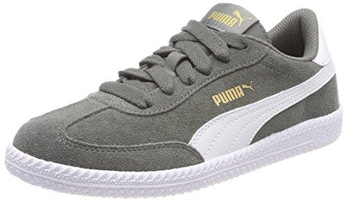 Puma Unisex-Erwachsene Astro Cup Sneaker, Schwarz (Castor Gray White), 43 EU